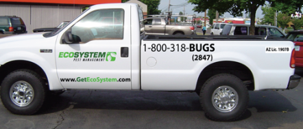 Eco_System_Vehicle_Graphics_The_Image_Foundry