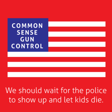 Common-Sense-Gun-Control-Meme