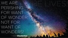 WantOfWonders-GKChesterton-02-by-TheImageFoundry.biz